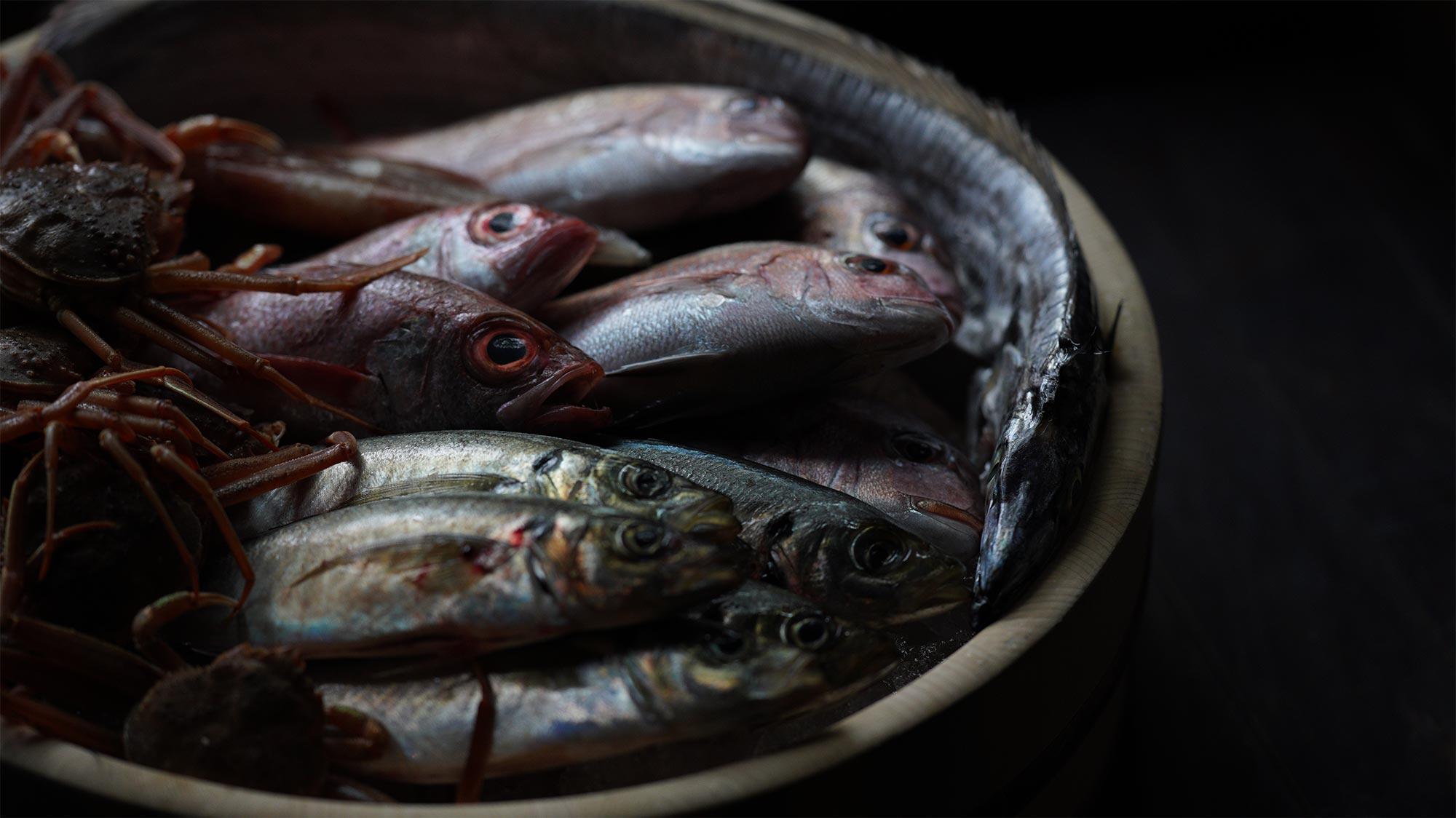 鮨 風和利のイメージ画像です。